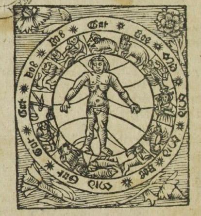 Medizin der Maya