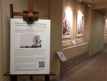 Ausstellung Stadtbäume im Durchgang zum Lichthof