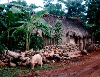 Maya Haus in Quintana Roo